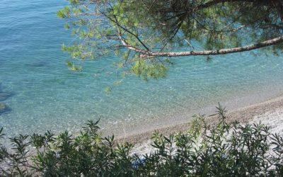 "A Trieste tra ""bagni"" in mare e… mostre!"