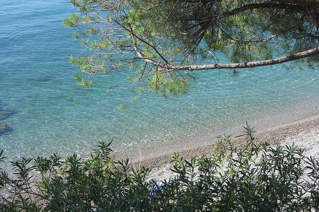 A Trieste tra bagni e… mostre!