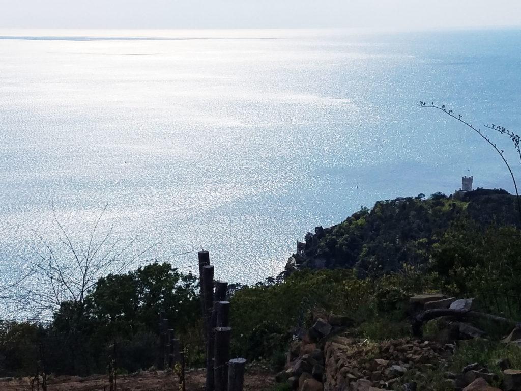 HGolfo Trieste da Contovello